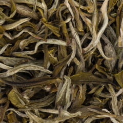 Emerald Spring Green Tea - Refreshing, Sweet, Spring-like