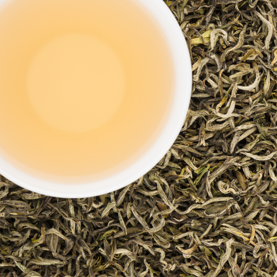 Spring White Buds Organic Loose Leaf White Tea with Delicate Smooth and Buttery notes