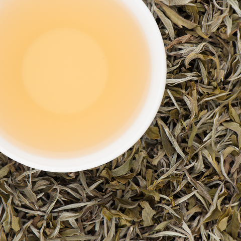 Ama Dablam White Tea - Autumnal, Bai Mudan-style - Fresh from Autumn 2016