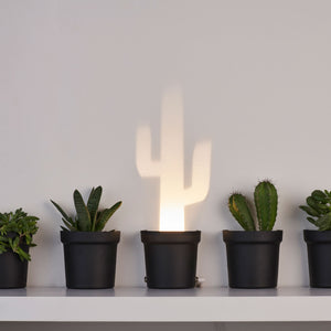 A Single Lamp Made Plastic Containing 3 Different Cactus Shapes