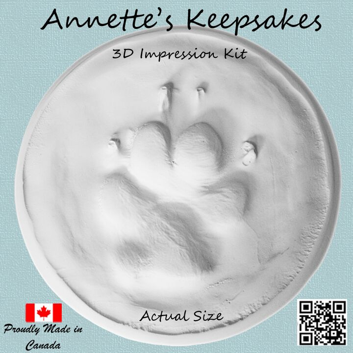 Small Pet impression kit