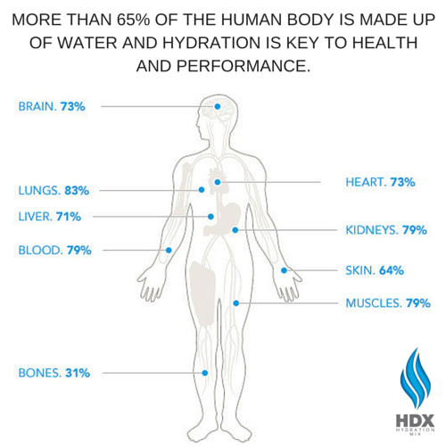HDX Hydration Mix | 12 Pack - HDX Hydration Mix | HDXmix.com  - 3