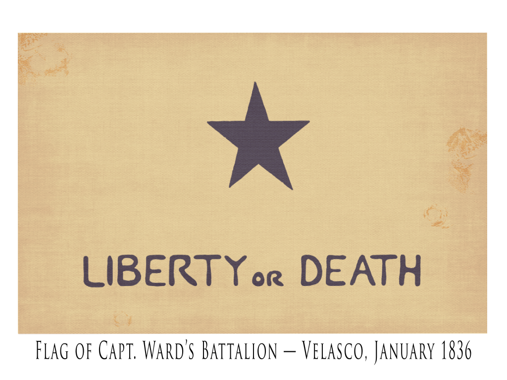Ward's Battalion Lone Star Flag - 1836