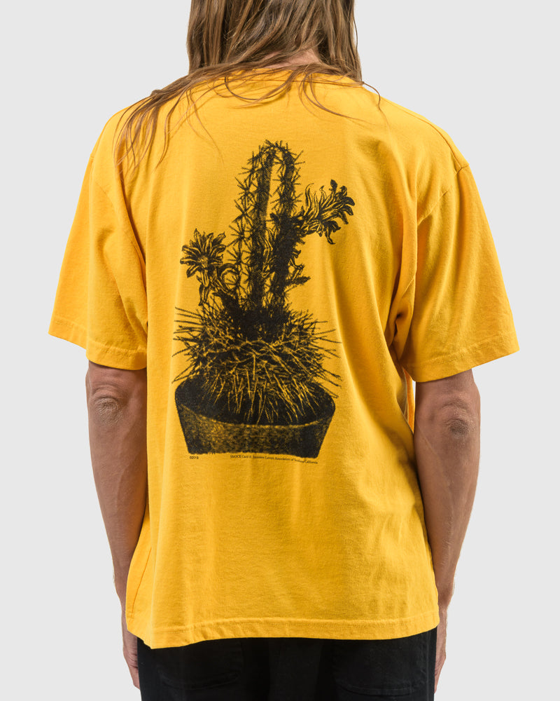 Short Sleeve Tee with Cacti Screenprint in Yellow