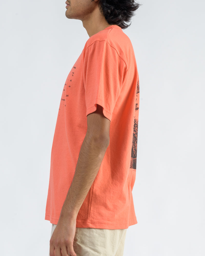 Short Sleeve Tee with Cacti Screenprint in Coral