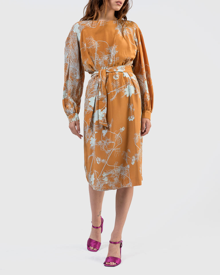 Dizan Dress in Ochre