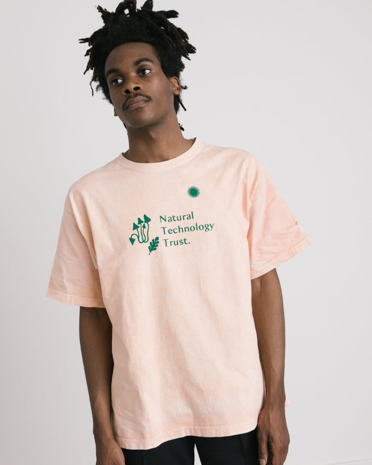 Grateful Tee in Peach