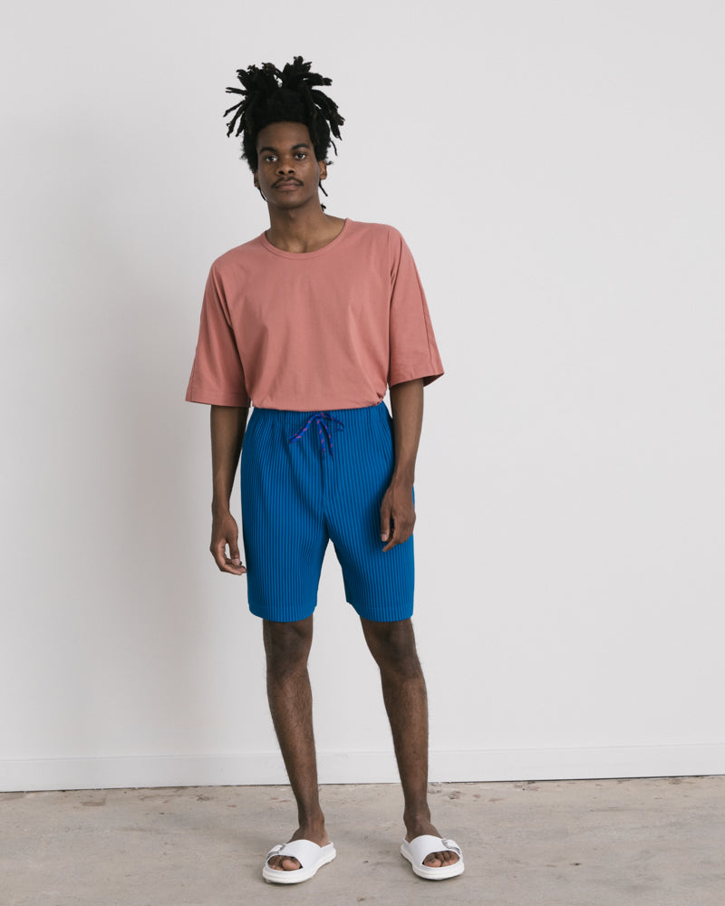 Pleated Shorts in Blue