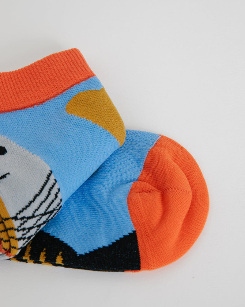 Half Fish Socks in Blue