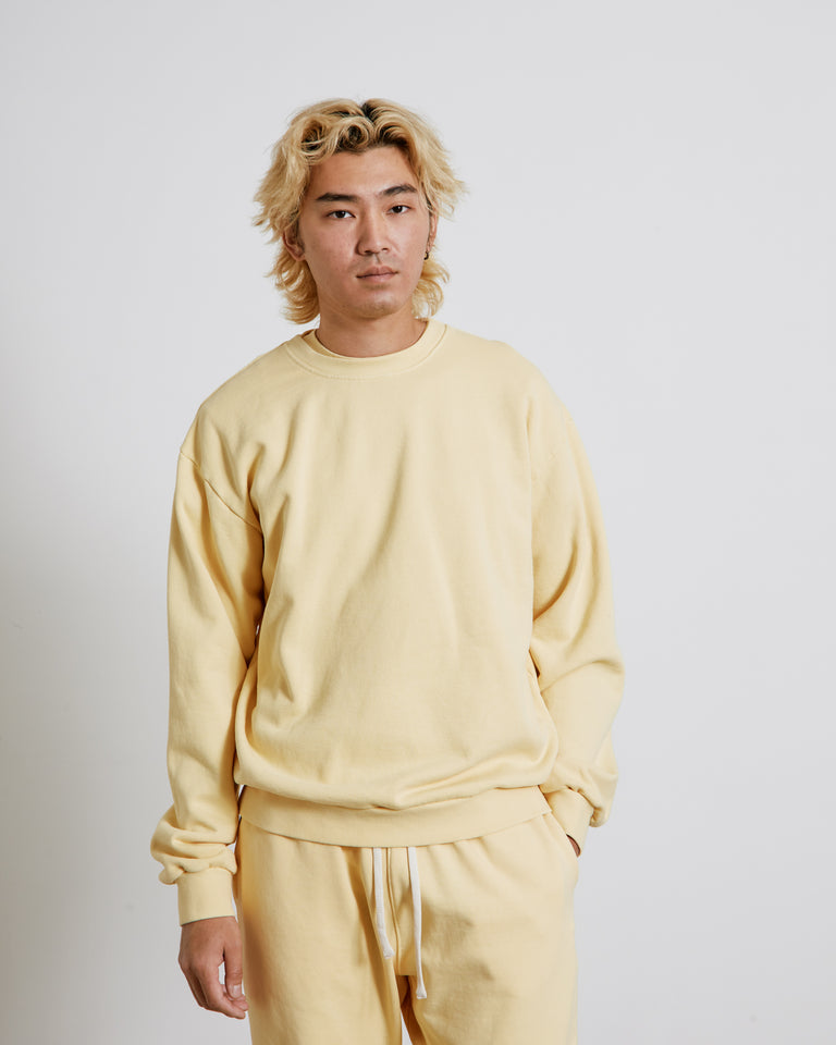 Albers Crewneck Sweatshirt in Lemon Twist
