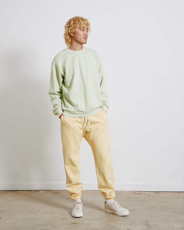 Albers Crewneck Sweatshirt in Faded Lime