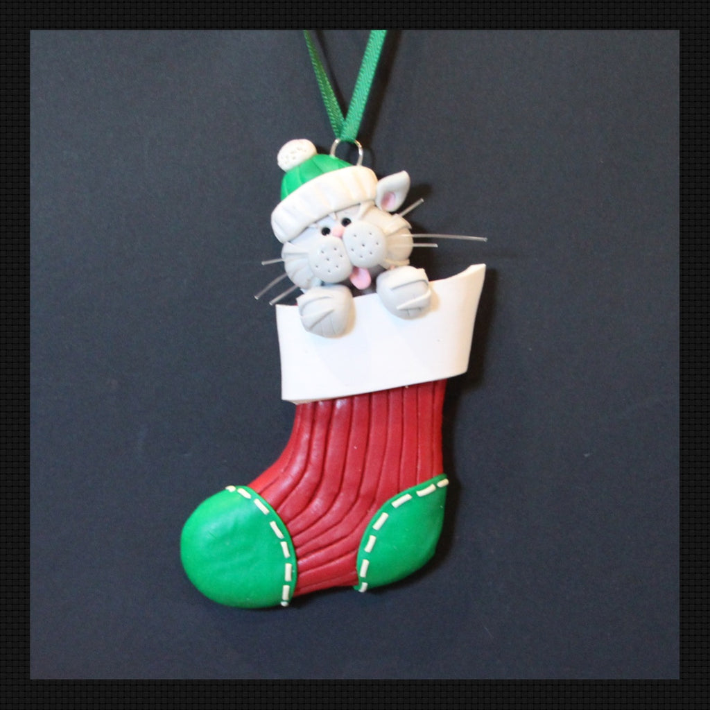 Small Grey Cat in a Stocking
