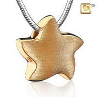 Pendant: Angelic Star - Gold Vermeil Two Tone