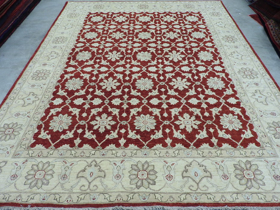 Cream and Red Afghan Hand Knotted Choubi Rug Size: 241 x 297cm-Afghan Rug-Rugs Direct