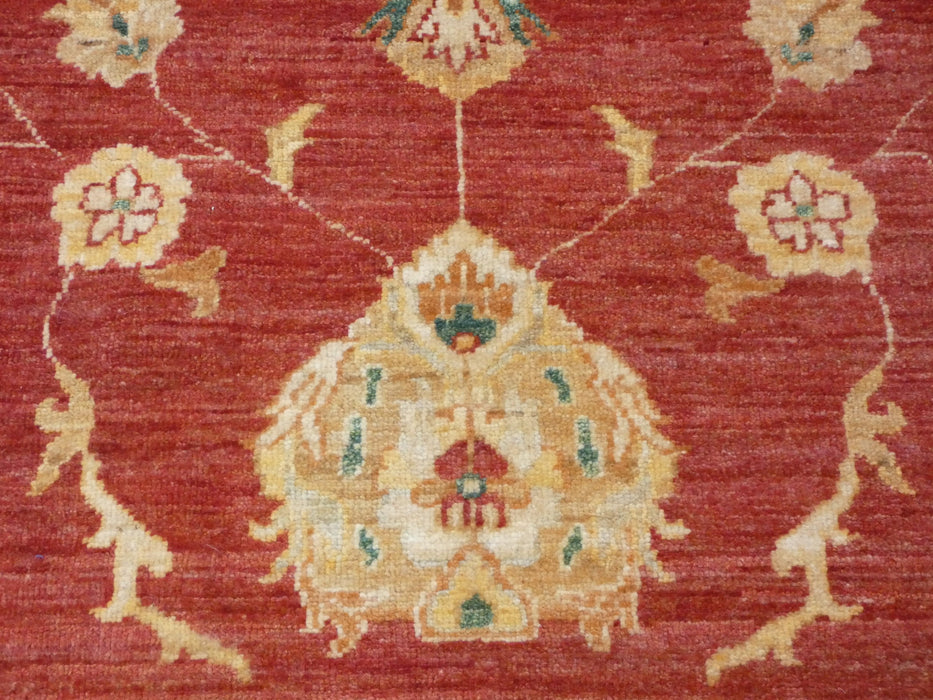 Afghan Hand Knotted Choubi Rug Size: 276 x 198cm