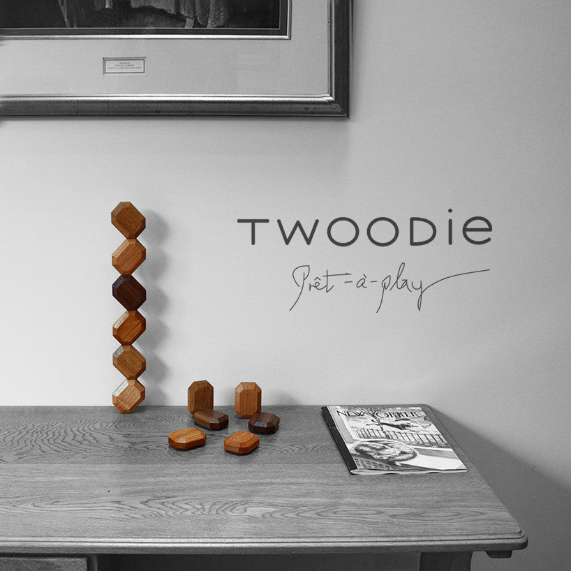 Twoodie wooden toys stacked on a desk in four types of organic materials