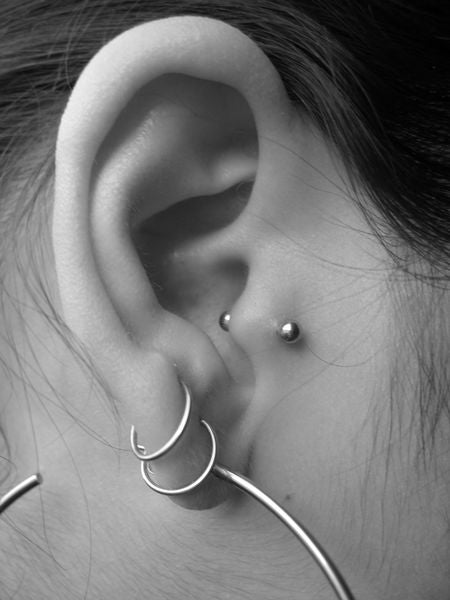 $10 Tragus Ear Piercing ( +jewelry $20 & up)