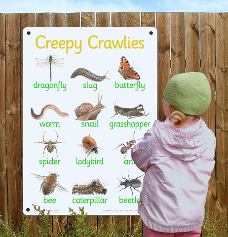 Creepy Crawly Outdoor Board
