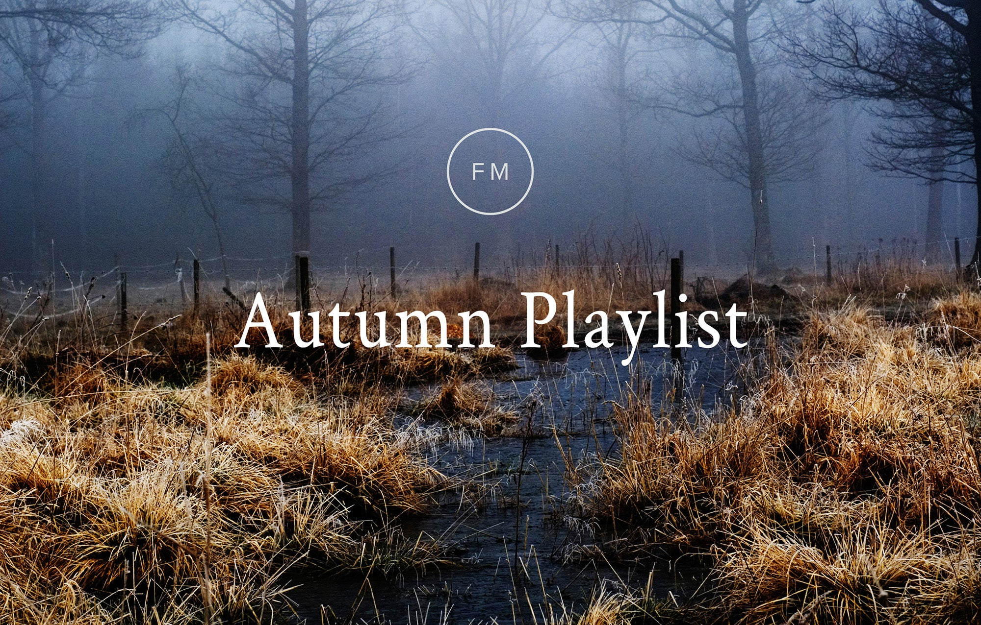 Fellow Mag Autumn Playslit