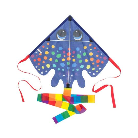 Rainbow Ray Kite