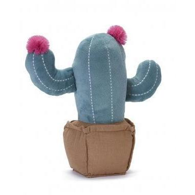 Blooming Cactus - Nana Huchy - Hugs For Kids