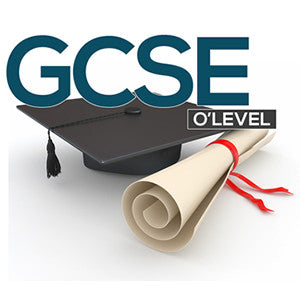 O-Level-Business Studies