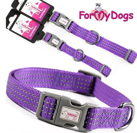 Very Violet Collar & Lead Set