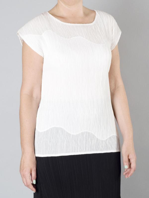 Ivory Chiffon Trim Crush Pleat Top