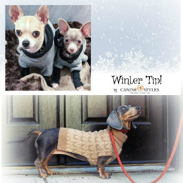 **Winter Tips - Dogs get cold too! **