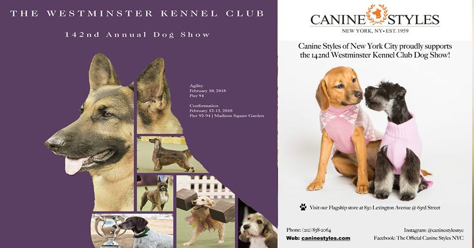 Canine Styles Salutes the Dogs of the Westminster Show!