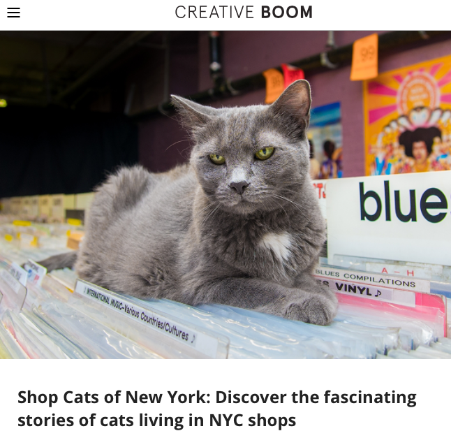 03/17 - Creative Bloom Explores Shop Cats of New York: Discover the Fascinating Stories of Cats Living in NYC Shops