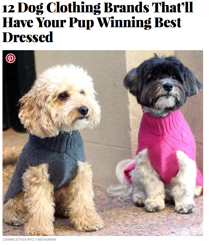 03/17 - InStyle Names 12 Dog Clothing Brands That'll Have Your Pup Winning Best Dressed