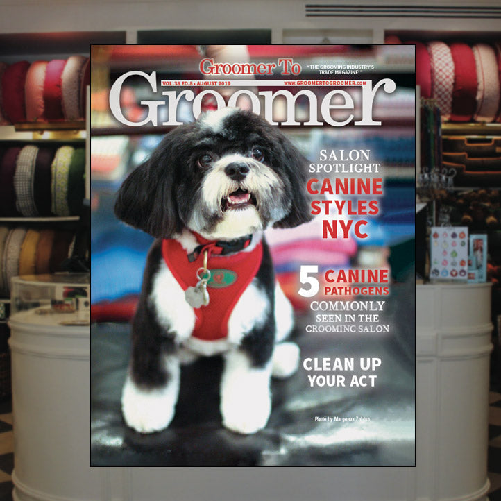 Canine Styles featured in Groomer To Groomer Magazine!