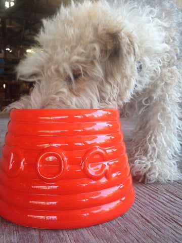 Canine Styles Dog Bowls