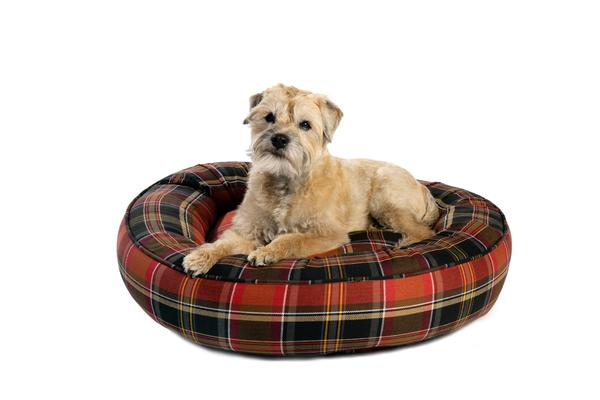 Canine Styles - Cotton Canvas - Maclachlan Red Plaid