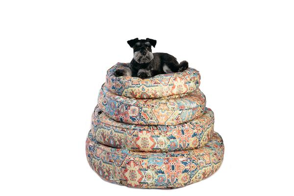 Canine Styles - Cotton Canvas - Naya Multi