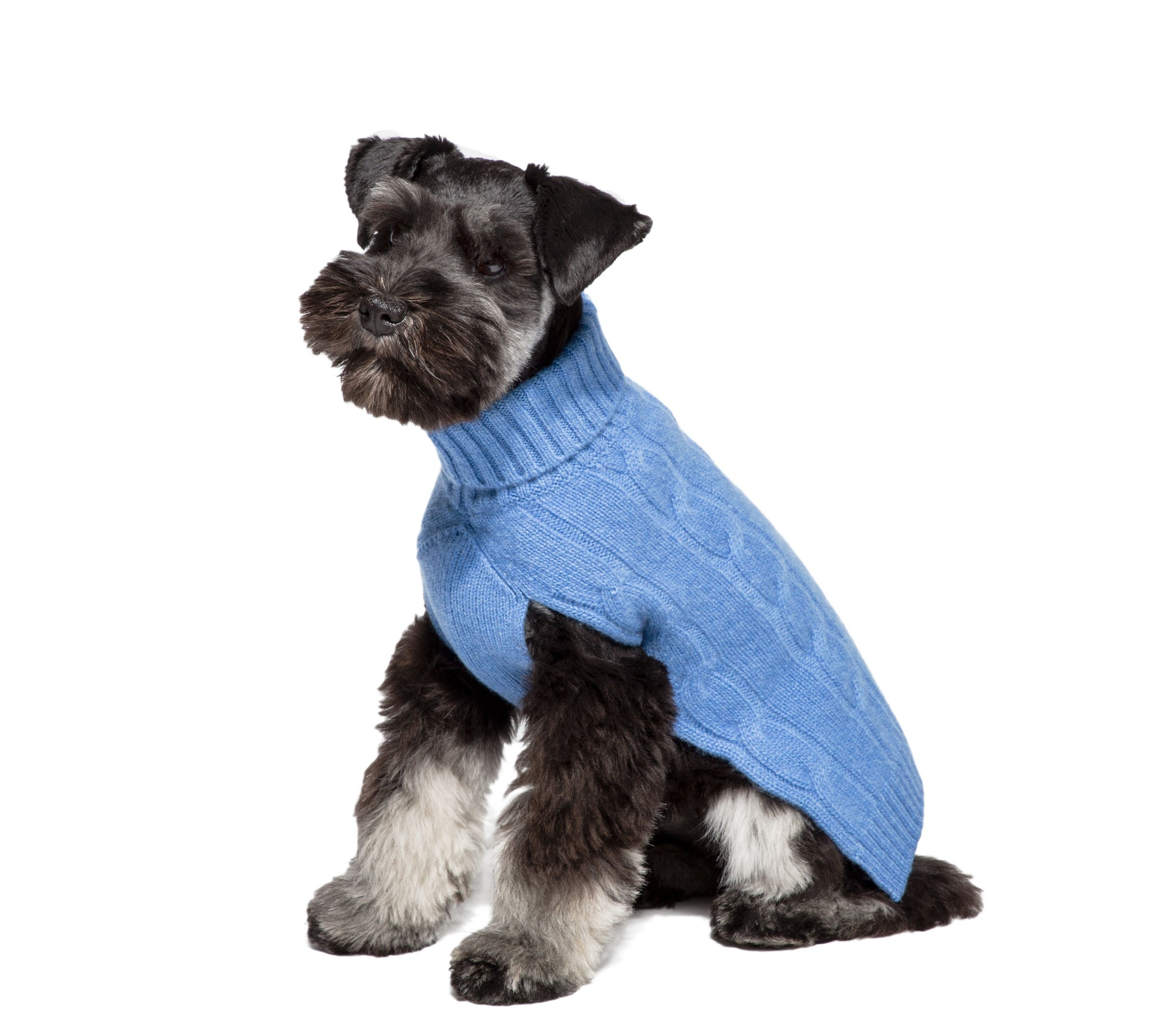 Cashmere Dog Solid Sweater - Canine Styles 4 Color Options