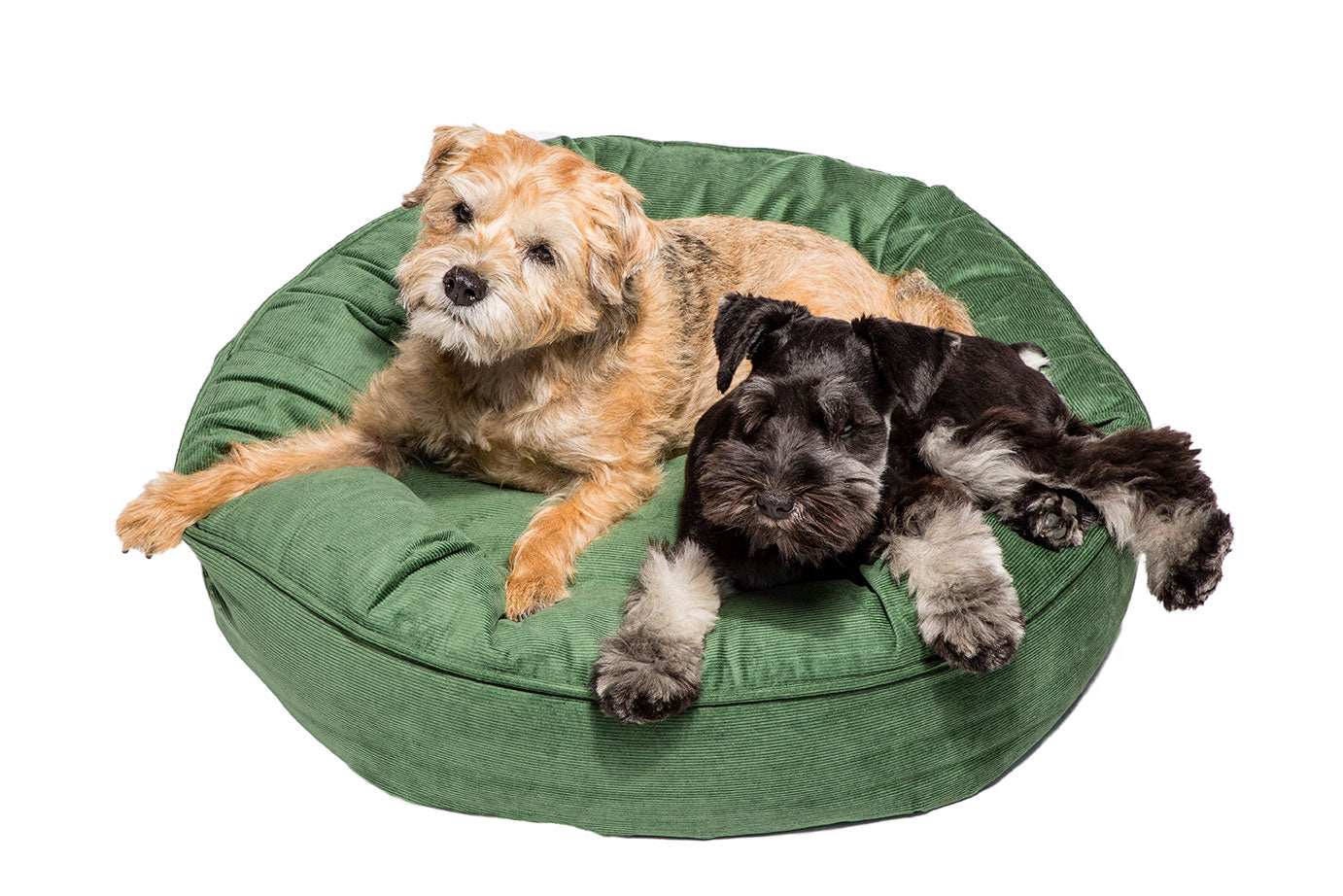 Canine Styles - Corduroy Camel - Corduroy Light Green - Dog Bed