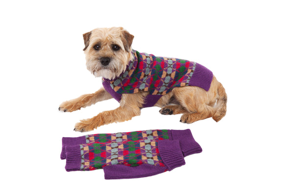 Wool Dog Sweater - Highlands Purple