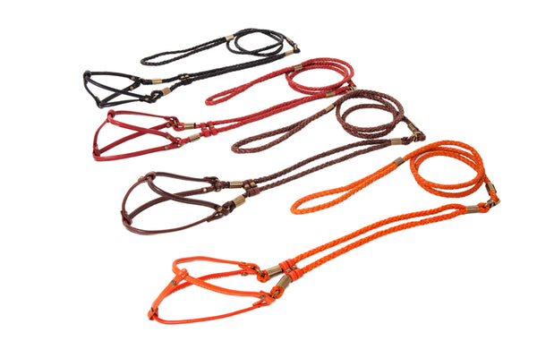 Braided Step-In Harness - All-in-One Lead & Harness - 4 Color Options