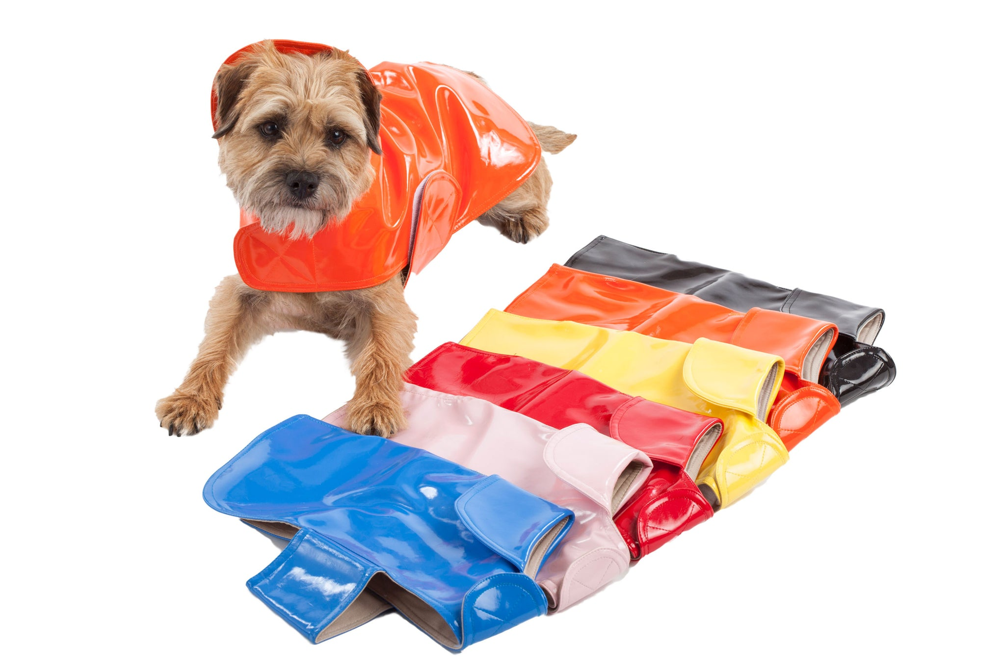 Dog Coat - Slickers, Raincoats, 6 Color Options