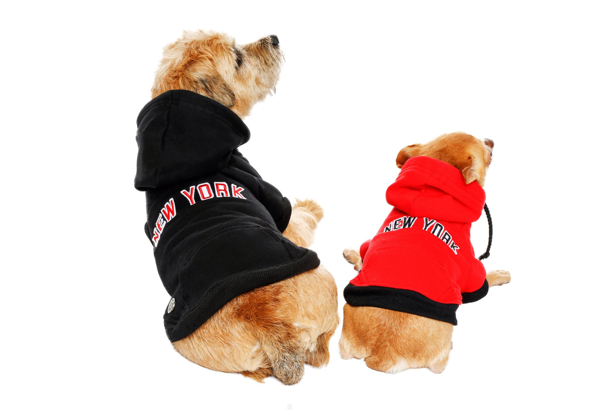 Sweatshirt Hoodie - NYC Dog Hoodie - Dog Sweatshirt - 3 Color Options