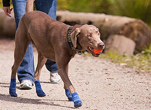 Anti-slip - Sport Boot - Dog Boot - Blue