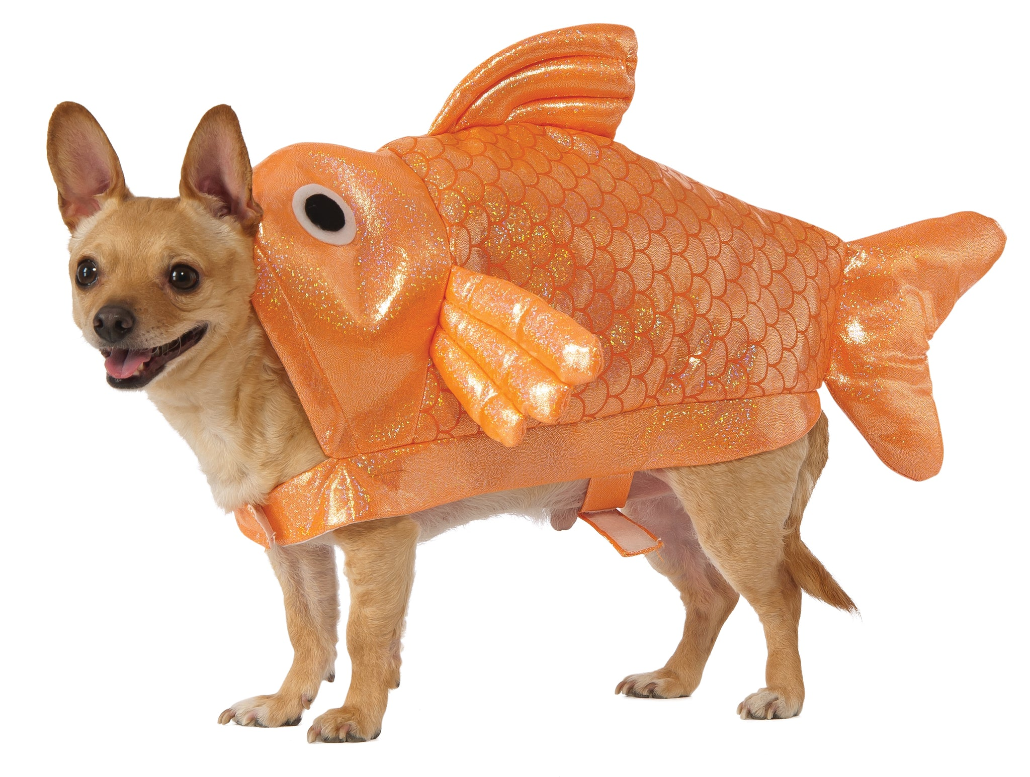 Dog Halloween Costumes | GOLD-FISH