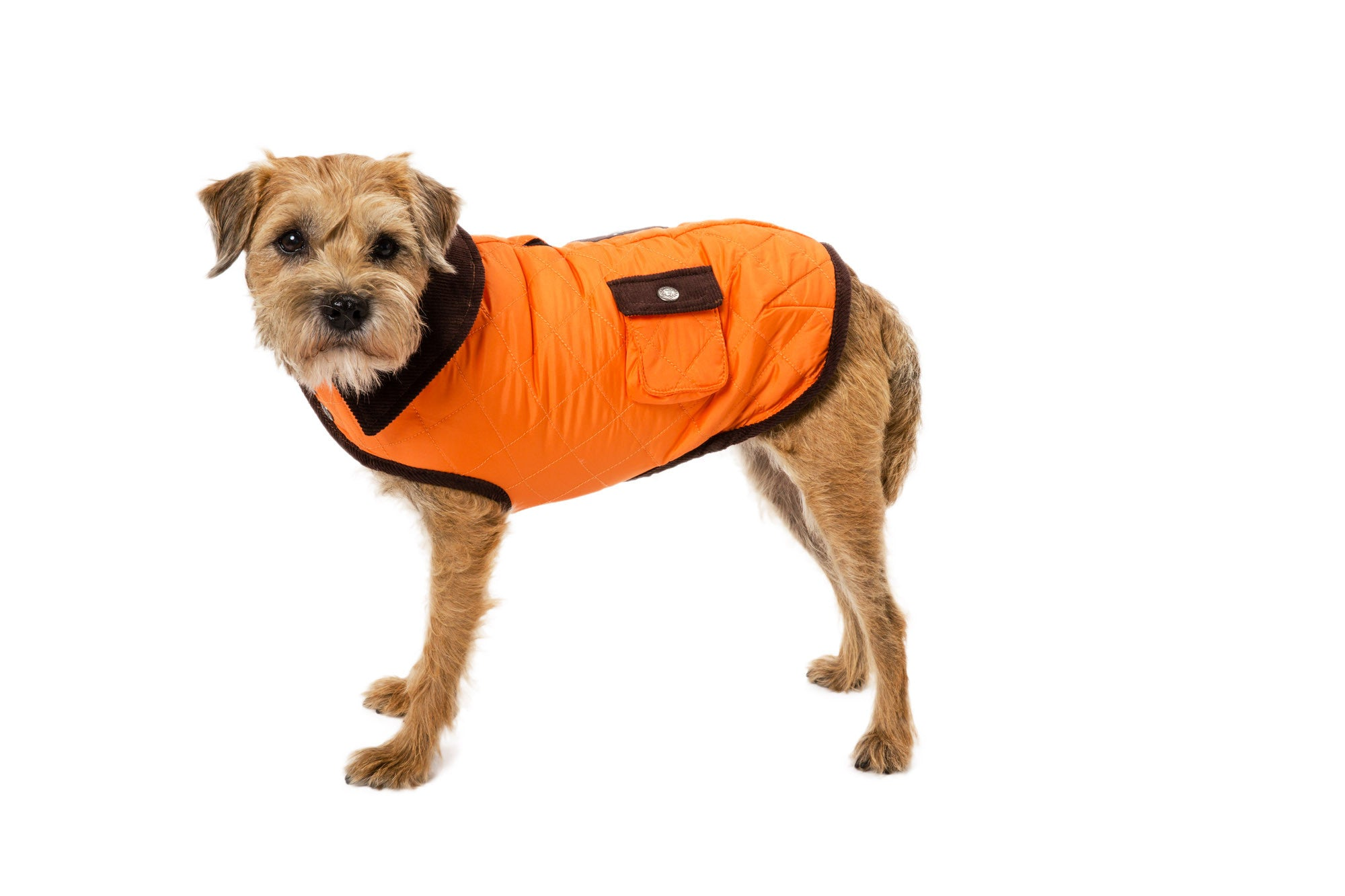 Dog Coat - Barn Coat, Dog Coats | 5 Colors
