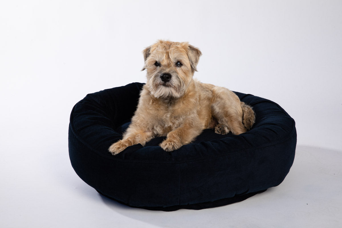 Canine Styles - Corduroy Hot Pink , Purple or Navy - Dog Bed