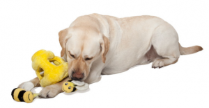 Plush Toy -Interactive Toy - Hide-A-Bee - Dog Toy - Dog Puzzle