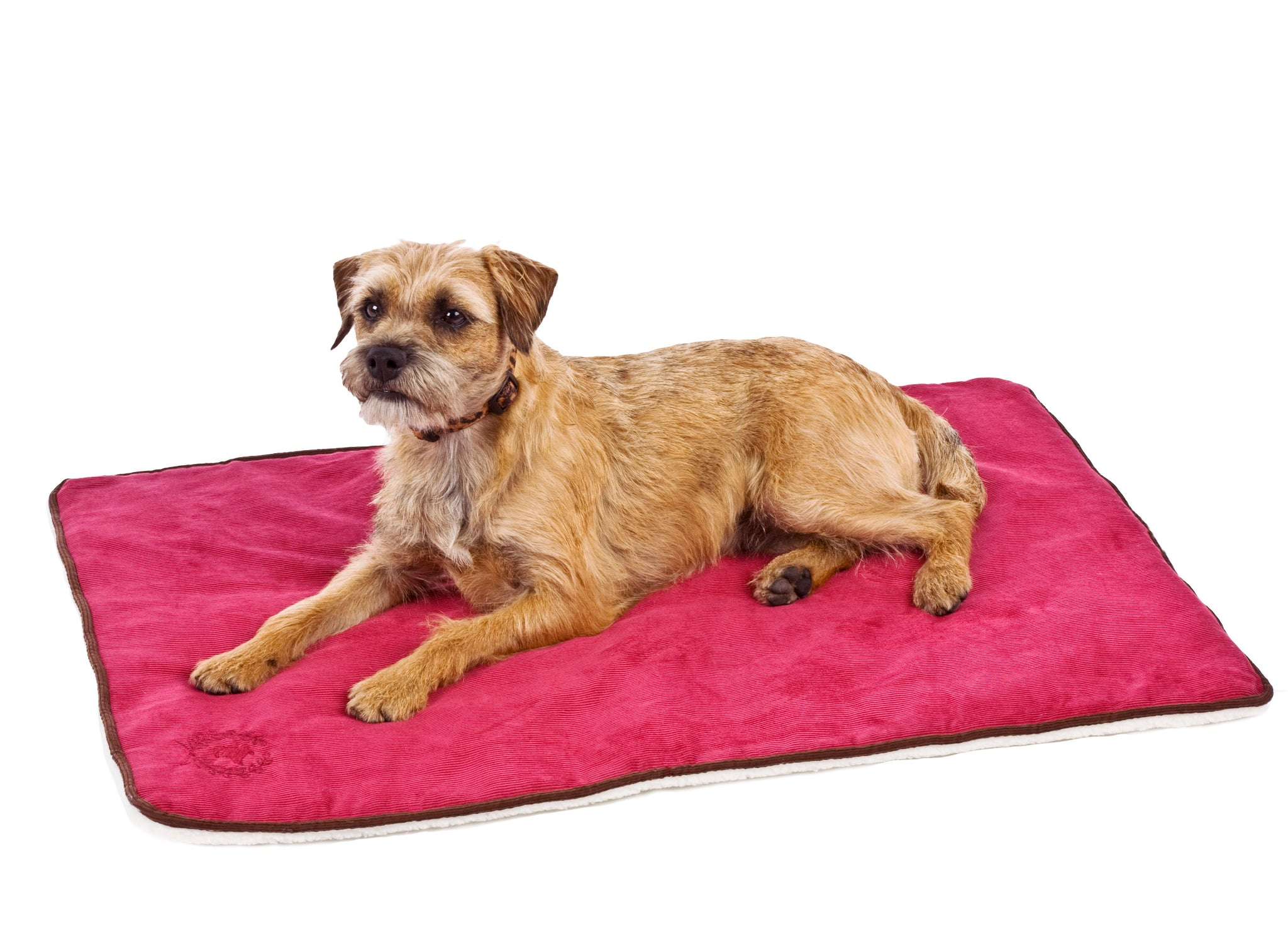 Canine Styles - Corduroy - Crate Mat - 8 Color Options
