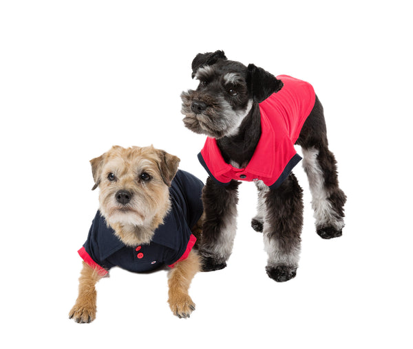 Dog Clothes | Red w/Navy or Navy w/Red Polo | Dog Shirts