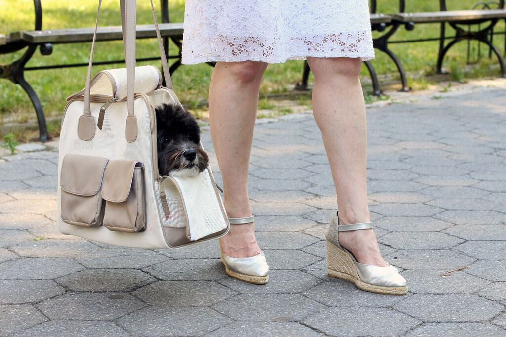 "Summer Carrier | Canine Styles |""See Through"" 
